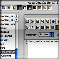 Aqua Data Studio Main Window