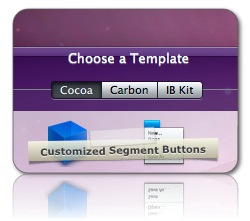 Customized Segment Buttons in CCI 1.9