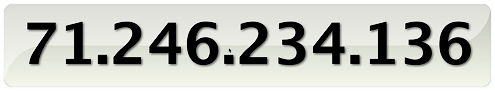 Quicksilver's Large Type IP Display